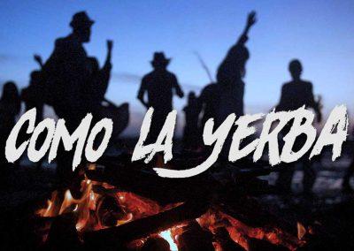 """Como la yerba """"El Canijo de Jerez y La Mari (Chambao)»"""