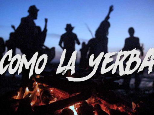 """Como la yerba """"El Canijo de Jerez y La Mari (Chambao)"""""""