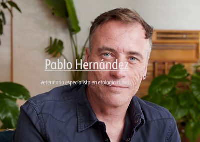 BRANDED CONTENT PABLO HERNÁNDEZ