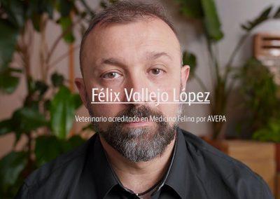Branded Content Felix Vallejo